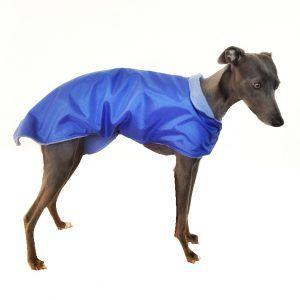 Blue Coat Retro
