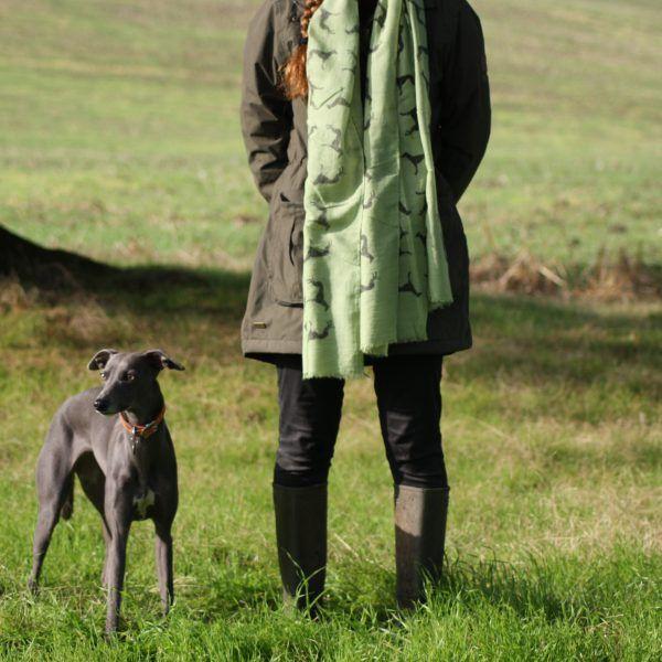 Apple Green Whippet Print Scarf Italian Greyhound Saluki