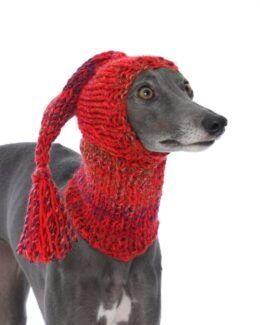 whippet greyhound hat