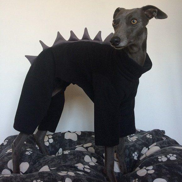 Dinosaur Whippet Onesie Jumper Greyhound Italian Sighthound