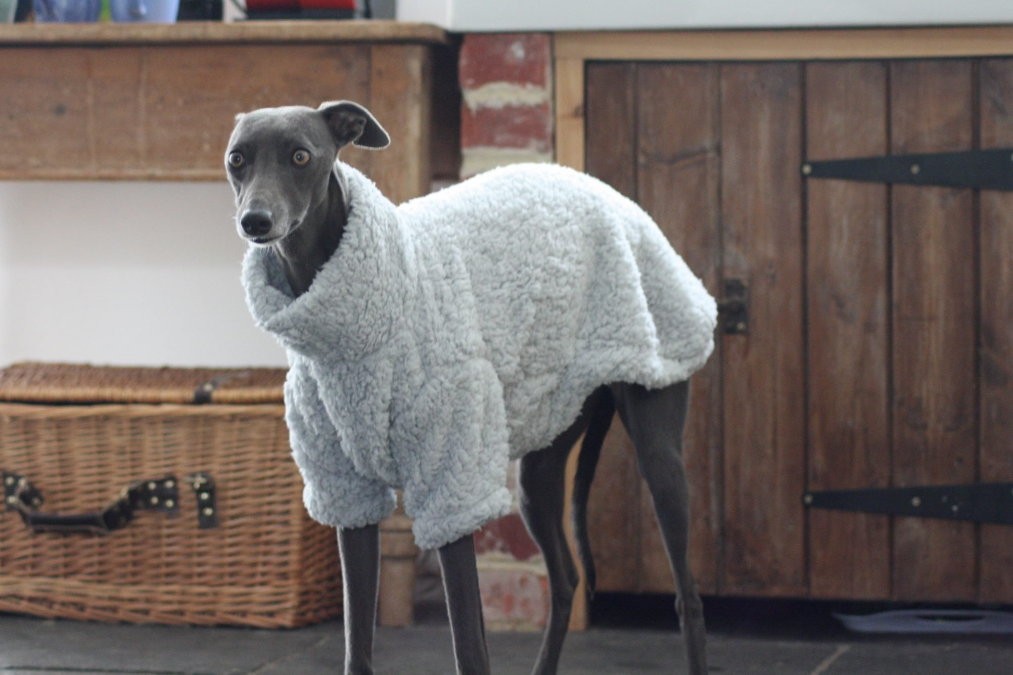 Grey Fluffy Fleece Whippet Jumper Greyhound Italian Lurcher