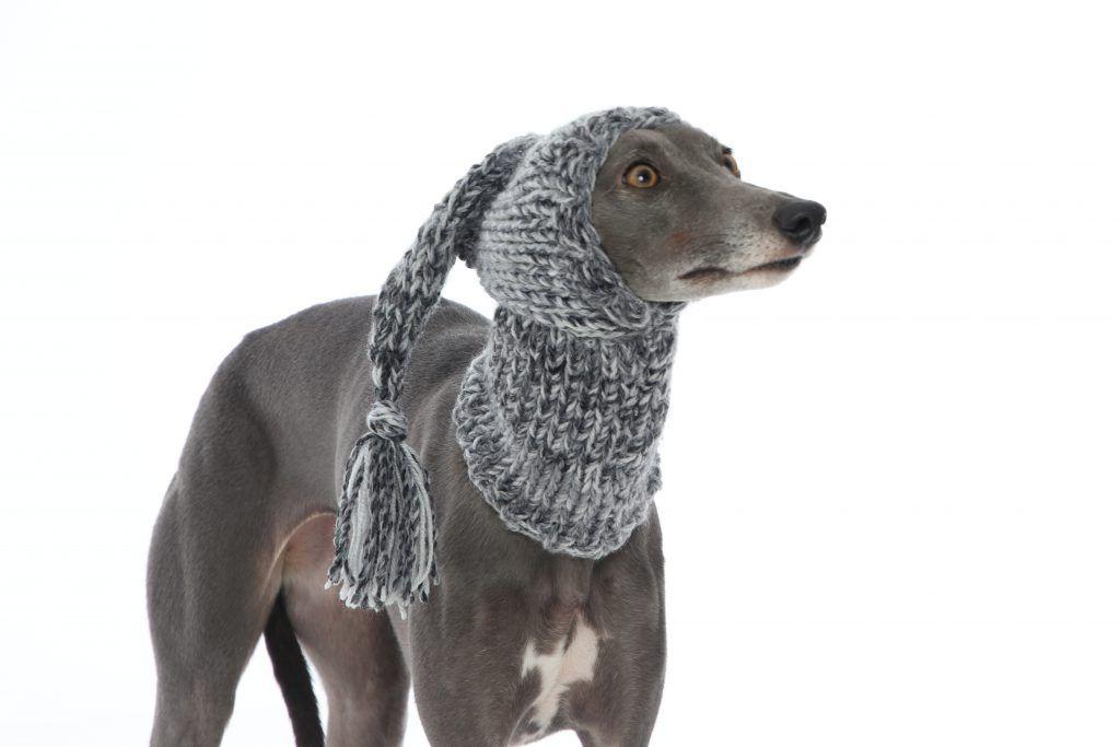 Whippet Grey Knit Hat Greyhound Lurcher Italian Sighthound