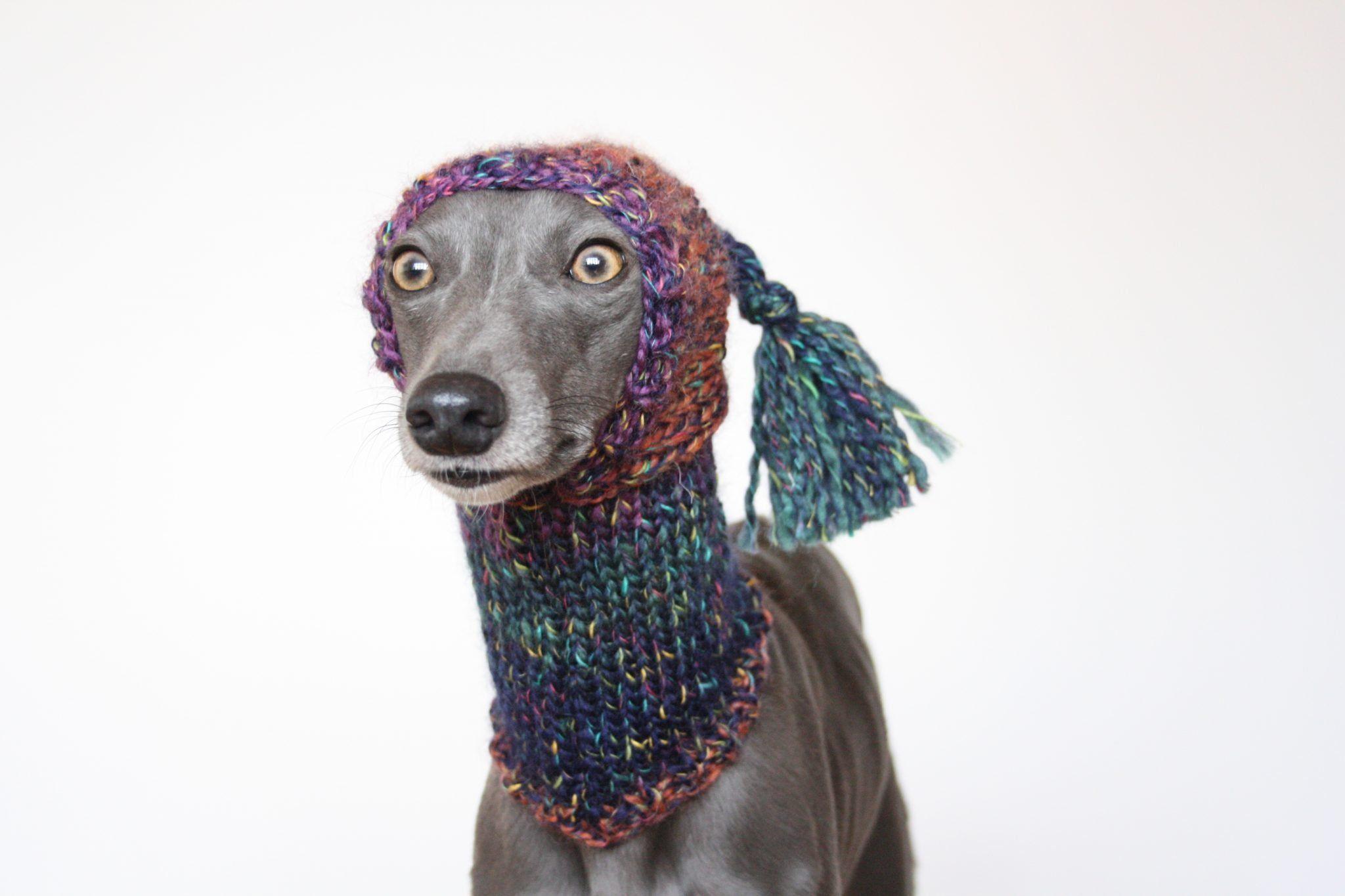 Whippet Rainbow Knit Hat Snood Greyhound Italian