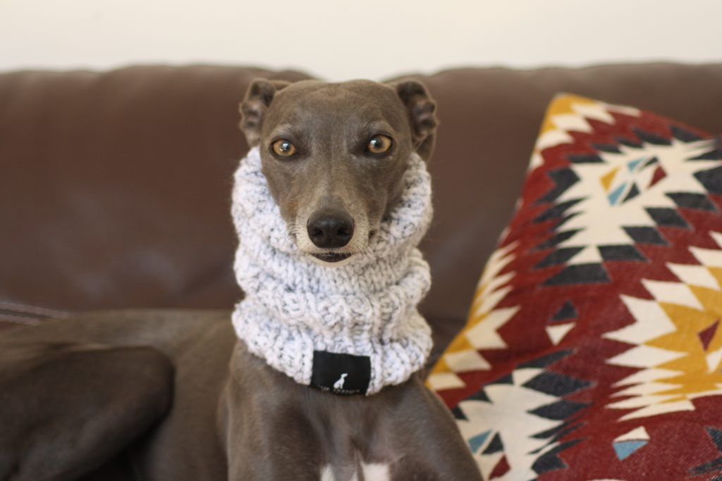 Whippet Grey Knit Neck Warmer Greyhound Italian Lurcher