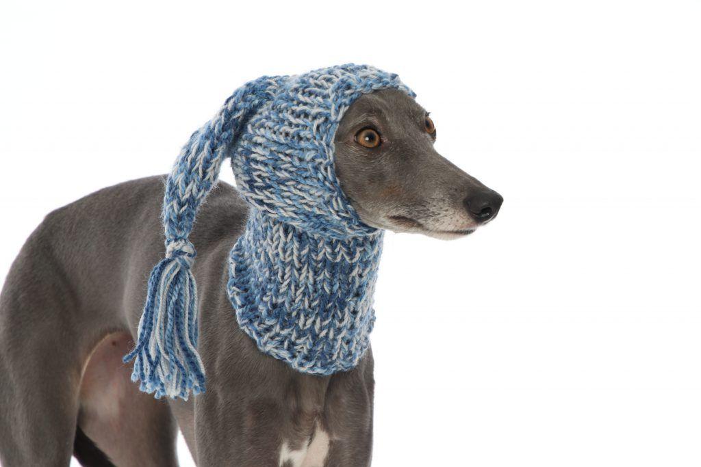 Whippet Greyhound Blue Knit Hat Snood Lurcher Italian