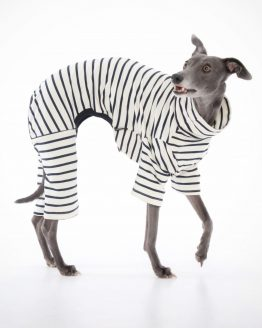 whippet greyhound onesie