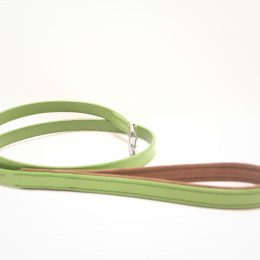 green leather lead