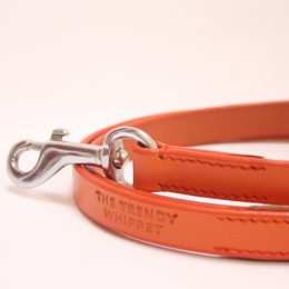 orange leather lead