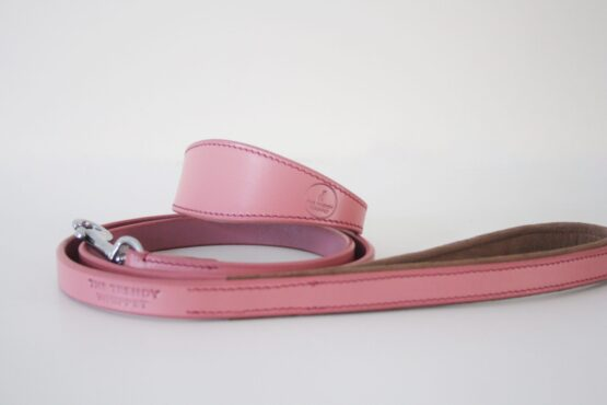 whippet greyhound lead collar