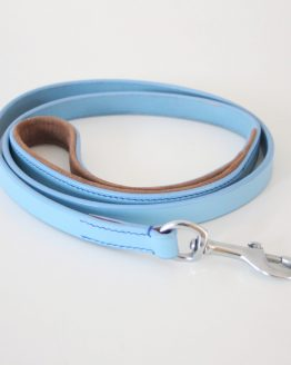 whippet greyhound lead