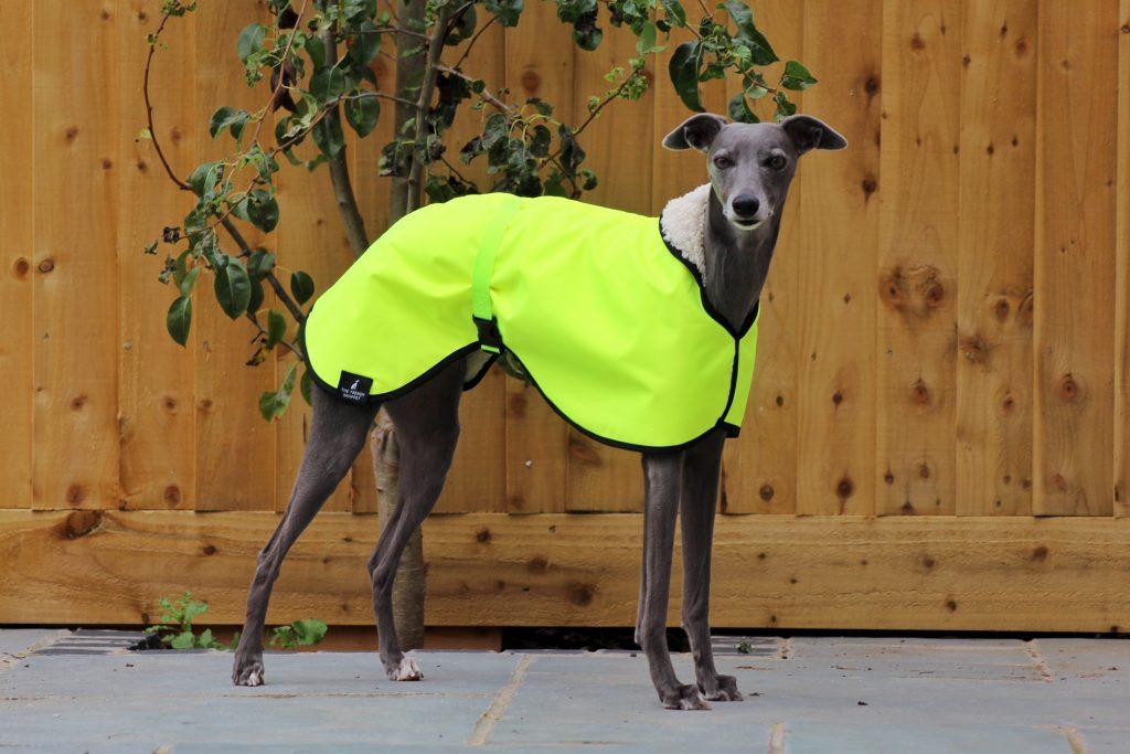 Hi Vis Yellow Waterproof Fleece Whippet Coat Greyhound