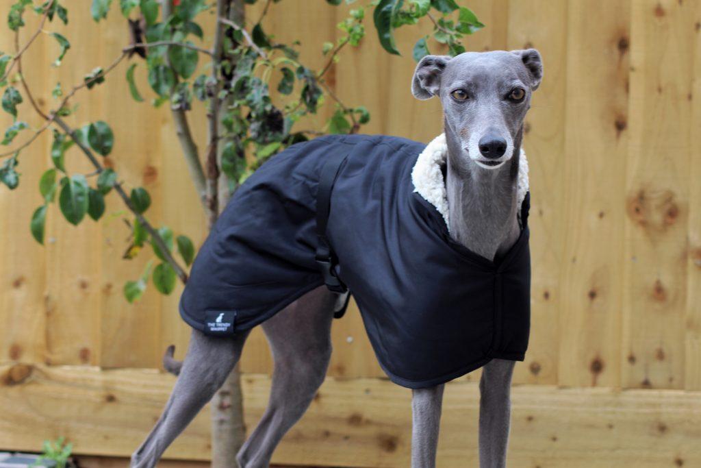 Black Waterproof Fleece Whippet Coat Greyhound Italian