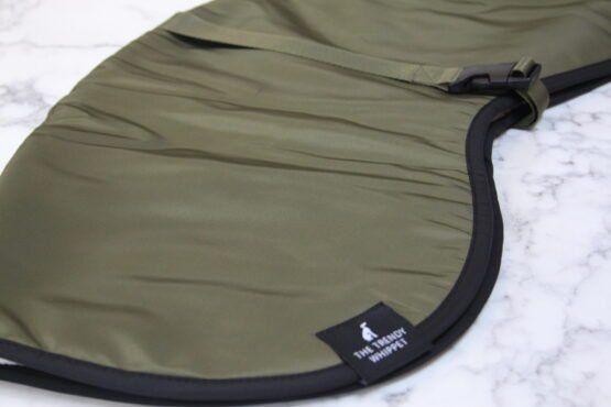 greyhound whippet coat