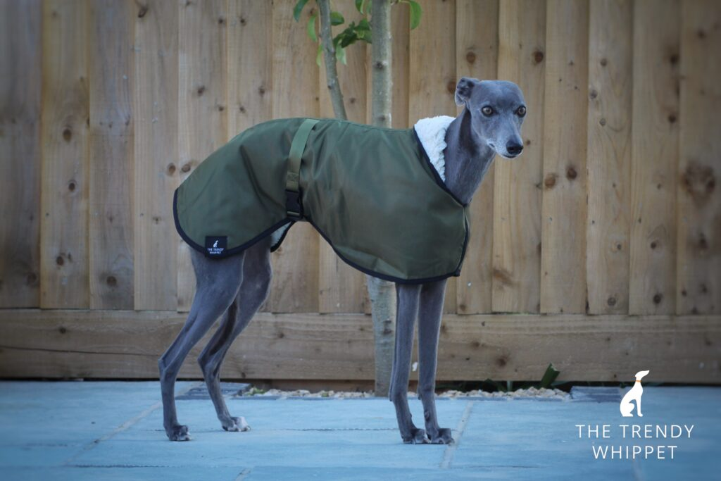 Olive Green Waterproof Fleece Lined Whippet Greyhound Coat